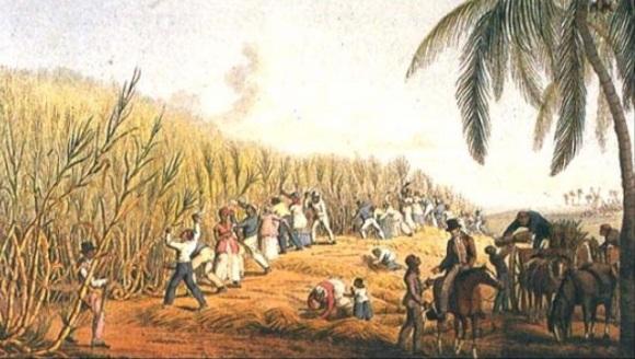 American Plantation