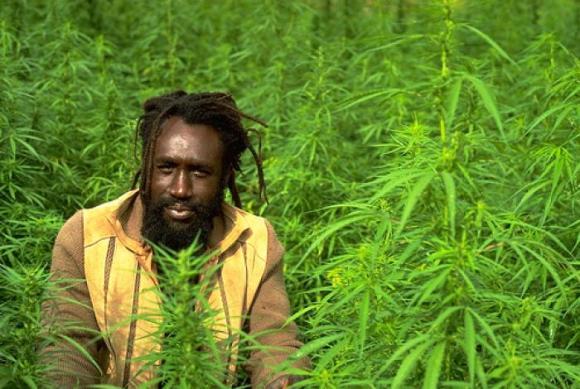 Jamaican Growers Union